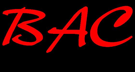 Projekt 1: BAC